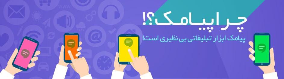 پنل پیامک همراه با دستگاه ذخیره موبایل